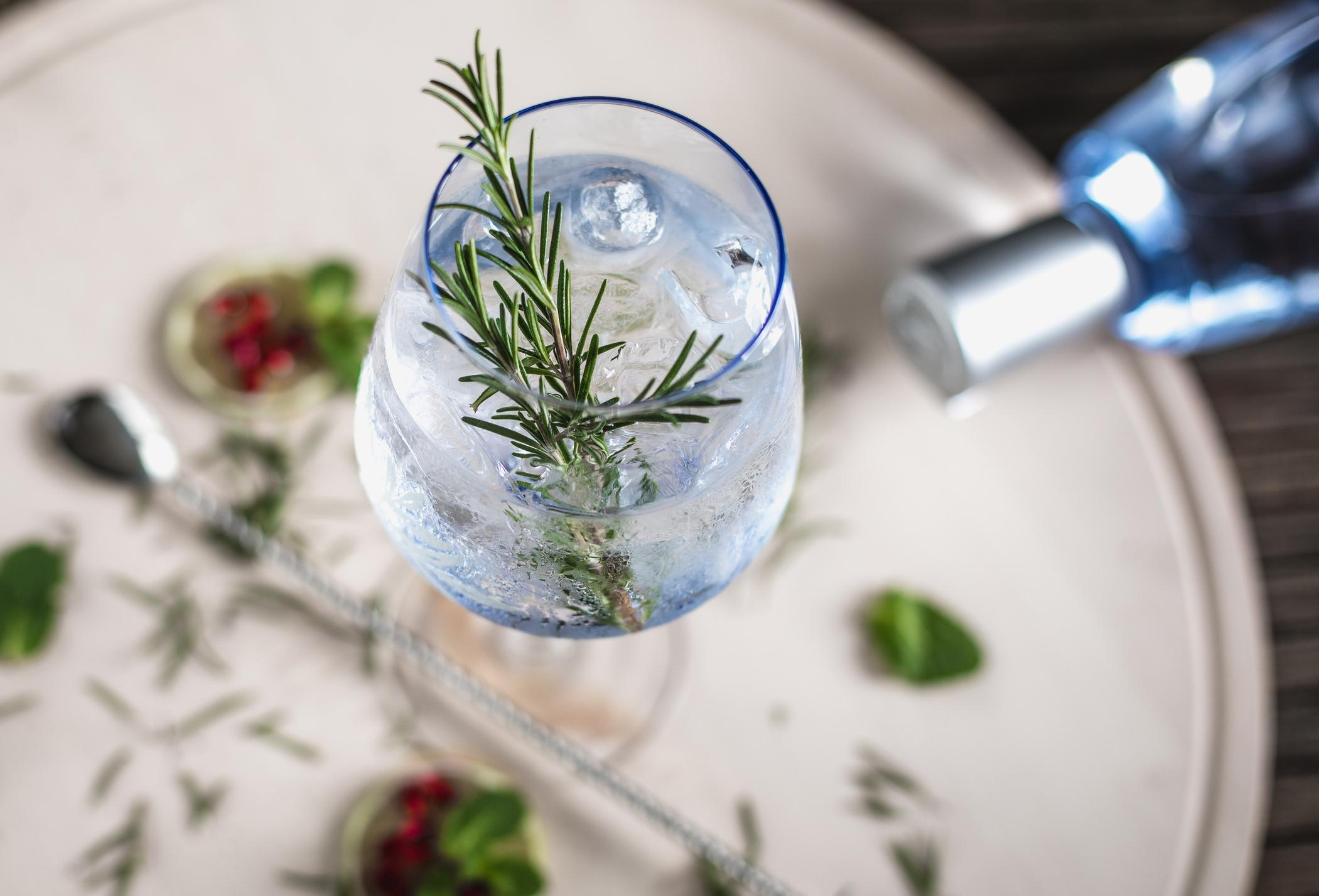 World Gin Day | Gin and Tonic
