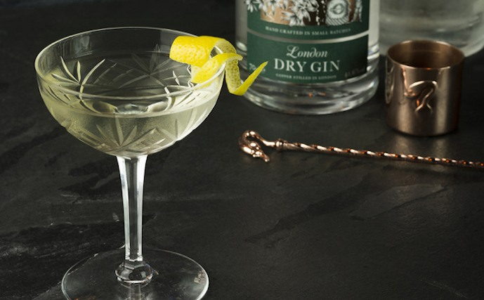 Gin and vermouth cocktail recipes